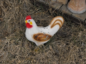 1414048_old_chicken_lawn_ornament